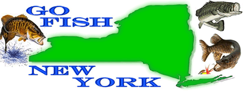 Go Fish New York - All New York Fishing