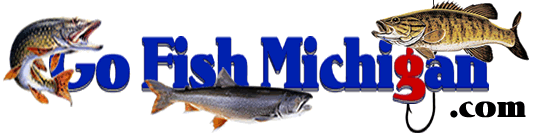 GoFishMichigan - Fishing Info Net