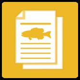Michigan Weekly Fishing Report